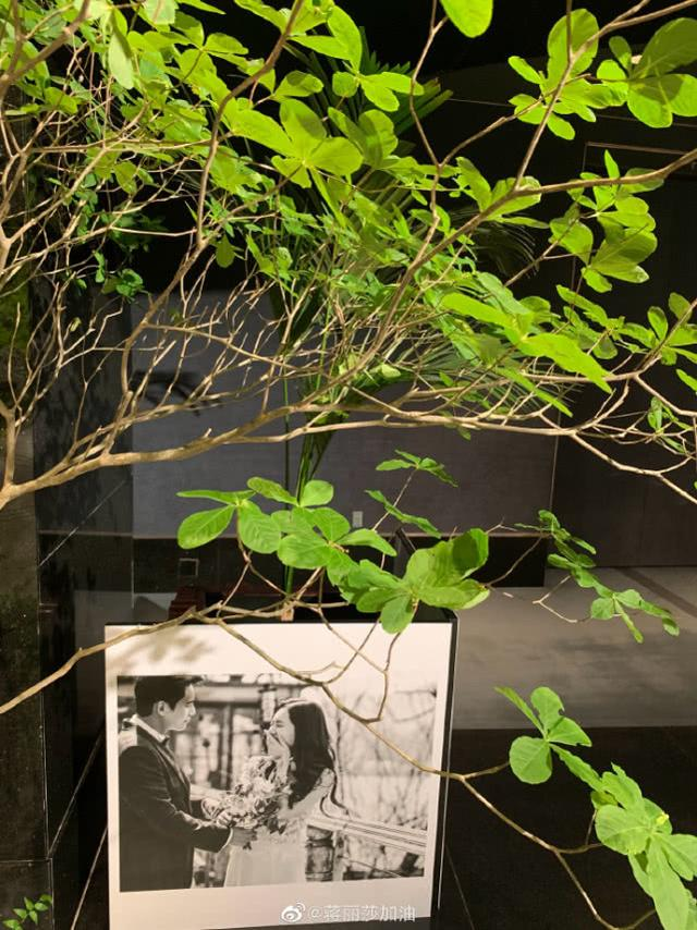 陈浩民夫妇亲赴秋瓷炫于晓光婚礼,四人现场举杯同框画面养眼