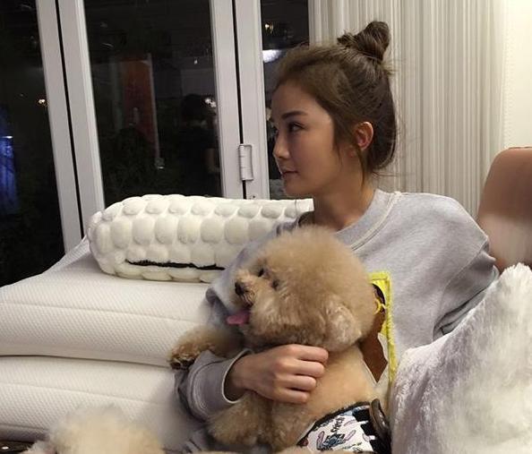 蔡卓妍曝出自己的房子,厨房面积也太小了,香港房子都这么小吗?