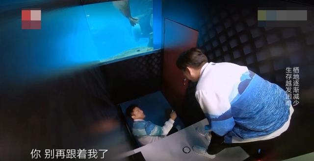 贾乃亮首秀被虐,对热巴的行为让黄磊叹气,《极限挑战》变跑男了