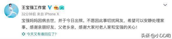 王宝强66岁母亲突然去世,曾联系马蓉带女送别,马蓉却在游玩
